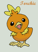 Torchic by Roky320