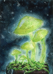 aceo for chid0ri: bioluminiscece on battery by kailavmp