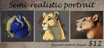 Semi-realistic portrait PAYPAL commission info by Tayarinne