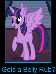 What if Twilight Sparkle gets a belly rub by arvinsharifzadeh