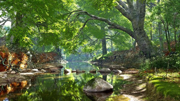 Tranquil Springtime Forest Stream by neanderdigital