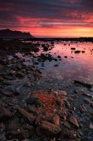 Flamin' Strand by prperold