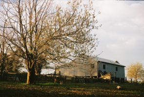 The Shearing Shed by balltastics2000