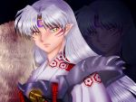 Sesshomaru by AngieMP