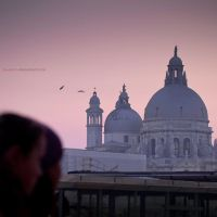 Venezia: In Love 4 Venice by blueanto