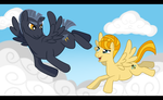 Above the Clouds by Wildfire-Tama