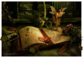 The Journal by CassiopeiaArt