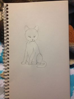 Sketch of a cat by PhatPandaPo23