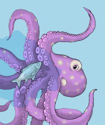 Octopus by Saevus