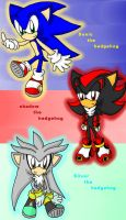 3 awesum hedgies XD by shadow2rulez
