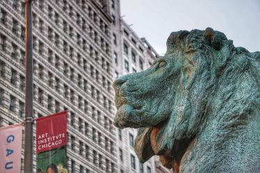 Chi Town Lion by hescalledthe