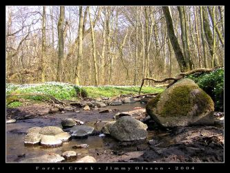 Forest Creek by J-i-m-p-a