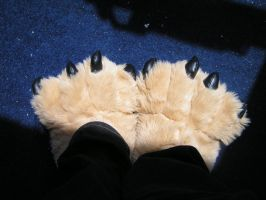 Paw slippers 2 by wishfoot88