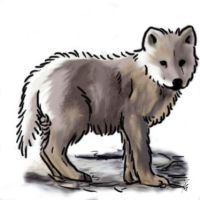 Wolf Pup by OmbroParanojo
