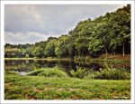 lakefront in august by MamzelleThorgard