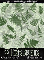 GIMP Ferns Brushes by Project-GimpBC