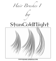 Hair brushes I by StarsColdNight