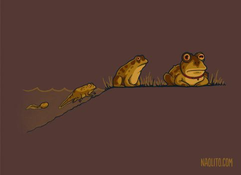 Evolution of Hypnotoad by Naolito