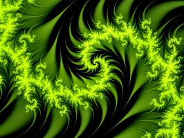Green Thorns by Thelma1