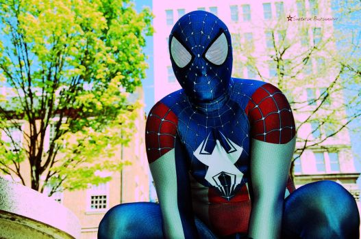 Patriotic Spidey (5) -Cross Process- by Shecktor-Photography