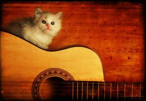 Sing for me a song by MeSHa3eL