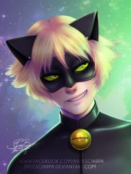 Miraculous Chat Noir by breesciarpa