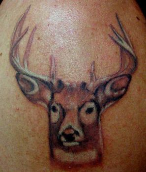 Deer Portrait Tattoo by buzz-n-sara
