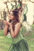 Titania and Butterfly by Tamiyo-Cosplay