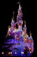 Sleeping Beauty Castle Night by azerinn