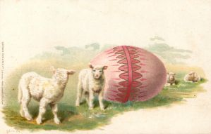 Little Lambs, Giant Egg! by Yesterdays-Paper