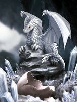 White Dragon Hatchling by dashase