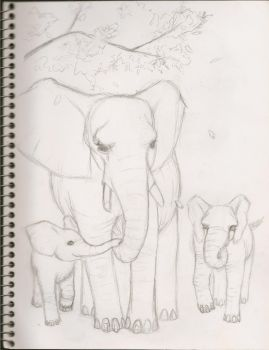 elephant sketch by YokiMoki