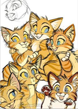 Kitty pile WIP by SilverDeni