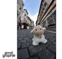 Home Alone - Lost in the City by Gwali