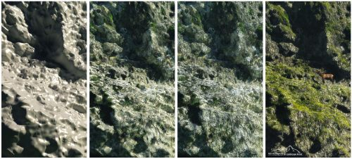 Vue Rock Test In 4 Steps by 3DLandscapeArtist