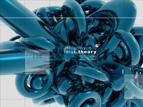 torus theory by wafer