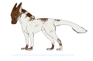 Piebald male Dragon-Dog by Tephra76