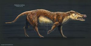 Pakicetus Inachus Restored by TheDragonofDoom