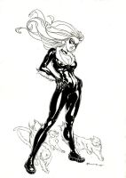 The black and the little ones by boscopenciller