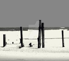 Posts on a beach. by E-James