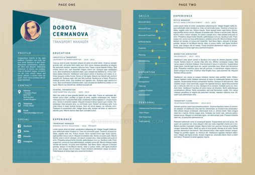 Mermaid - Resume Template by Naddar