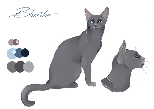 Bluestar character design by Whitefeatherink