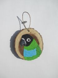 Nanday Conure Ornament by MadalynC