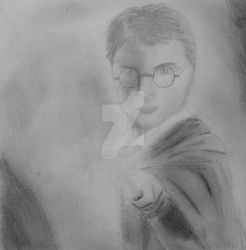 Harry Potter by Suiag