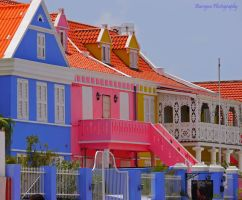 The colours of Curacao.,..,.,.. by burcyna