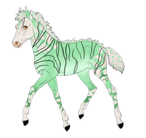 N789 Padro Foal Design for UnknownRidersStable by casinuba