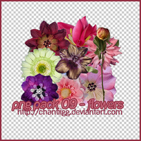 PNG PACK 09 - FLOWERS by ChantiiGG