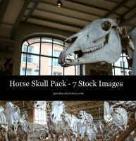 STOCK - Horse Skulls by Spandex