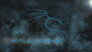 Kali Linux - A Fog Day by ZeroxProject