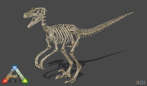 [ARK:SE] Skeletal Raptor by Phelcer